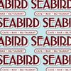 Picture of Seabird